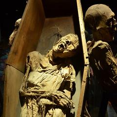 Mummy squared, Guanajuato (Thomas Roland) Tags: travel summer museum america mexico sommer central tourist guanajuato museo mummy amerika mummies momias mellemamerika mumier