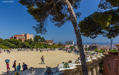IMG_2932 (COULEUR SUD (Marie)) Tags: barcelona barcelone