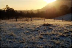 Frosty Morning Light (eric robb niven) Tags: winter walking landscape scotland dundee frosty hills dunkeld polneyloch ericrobbniven pentaxk50