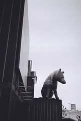 south bank (Max Nathan) Tags: summer england urban blackandwhite bw sculpture london art film britain xa2 southbank fox publicart olympusxa2 londonist urbanfox southbankcentre outofscale urbanist