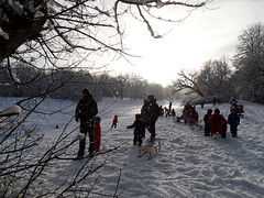 Rodelspa (onnola) Tags: park schnee winter shadow sun snow berlin germany children deutschland spuren traces kinder sleigh volkspark rodeln sonne schatten sledge schlitten neuklln gegenlicht hasenheide backlightning volksparkhasenheide rodelschlitten
