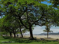 (Olbert Pitta Junior) Tags: brazil praia beach brasil santos baixadasantista