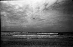 24 (michaelivnitsky) Tags: bw color film 35mm tel aviv d76
