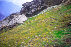 DSC_1257 (Fulcrum35) Tags: temple altitude shiva himalayas kedar uttarakhand chopta chandrashila tunganath