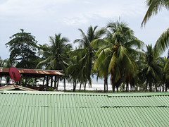 """Tortuguero: vue depuis le balcon de notre hôtel <a style=""""margin-left:10px; font-size:0.8em;"""" href=""""http://www.flickr.com/photos/127723101@N04/26844299650/"""" target=""""_blank"""">@flickr</a>"""
