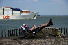 taking in the sun (larry_antwerp) Tags: netherlands ship nederland vessel schelde dole reefer  schip      walsoorden         doleeuropa