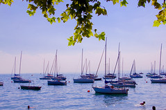 Reisen - Traveling (gerhard.boepple) Tags: italien summer italy sun lake water boats outside see boat spring garda wasser peace outdoor boote landschaft impression ausblick gardasee segelboote simmung bardonino