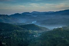 A Glimpse of Ella (Daran Kandasamy) Tags: morning travel sky mist mountains beautiful clouds forest landscape dawn countryside paradise lka wanderlust hills adventure explore srilanka