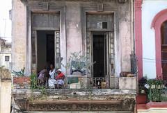 a couple o' tall ones.... (s@ssyl@ssy) Tags: balcony verandah people cubans threegenerations enjoyingthefreshair missingpane cat