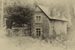 Tramway Cottage (timh255) Tags: house monochrome blackwhite nikon gloucestershire nik 1855mm cheltenham lightroom 52weeks d52 timhutchinson silverefexpro2