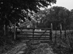 Security (Anne Worner) Tags: road trees bw abandoned forest gate texas farm bricks olympus security georgetown porch oaks ruts wirefence guarded anneworner texasshackchimney
