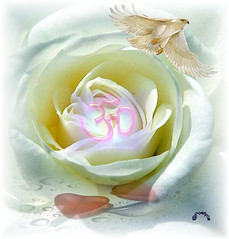 Purezza della vita (Poetyca) Tags: featured image sfumature poetiche poesia