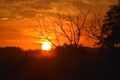 Por do Sol (Fabfhoto) Tags: pordosol sol natureza crepusculo calor