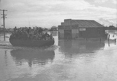 Maitland, N.S.W., August 1952 flood (maitland.city library) Tags: maitland newsouthwales 1952 floods flooding floodwater state library newcastle herald duco panel welding repairs cars garage rescue rescuing hood26669h dukw duck