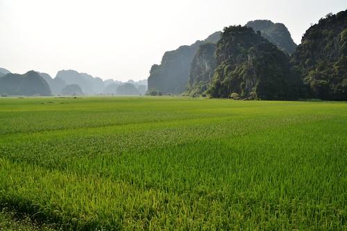 tam coc - vietnam 2