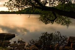 41Yamada Pond Park (anglo10) Tags: sunset japan