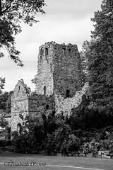 031 Sigtuna 2016-06-09 (eolsson65) Tags: blackandwhite stone nikon outdoor kultur ruin d750 sten nikkor sigtuna utomhus 24120 nikond750 nikkkor24120