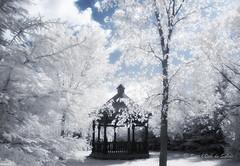 La Petite Pergola (Sous l'Oeil de Sylvie) Tags: sousloeildesylvie canon g11 modiifi infrarouge infrared rverie rve dream irrel unreal mai kay 2016 ciel sky nuages clouds arbre trees beauce qubec ir pergola parcveilleux stgeorges