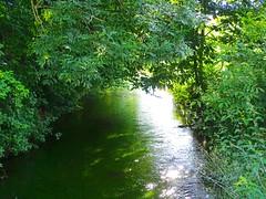 DSC03817 (Mr.J.Martin) Tags: tusslingbavaria bayren germany gapp garden canal village church wildflowers
