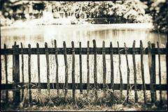 HFF (h_cowell) Tags: fence bw mono monochrome countryside tone panasonic gx7 zoom 45175mm nikefex hff