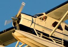 Vancouver 23Aug16.02 (Pervez 183A) Tags: beaver floatplanes vancouver harbor bc canada dehavilland pilot