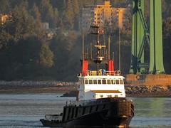 Island Tugger Into The Sun (Stirrett6) Tags: barge bc boat burrardinlet harbour port tug vancouver
