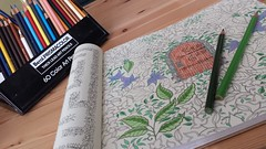 Color Time (MDawny72) Tags: johannabasford inkytreasurehunt colorful color colors creative artistic whimsical gardengate august 2016 fun secretgarden