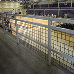 Western Hall Handrails