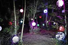 PanOramas 2016 - Nuit verte