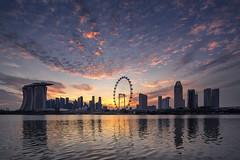 Sky View (bing dun (nitewalk)) Tags: singapore sunset marina barrage bayeastgarden night tse17mmf40l
