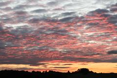 Royston Sunset - Explored (R.K.C. Photography) Tags: royston sunset therfieldheath clouds sky evening hertfordshire england uk unitedkingdom canoneos100d explored