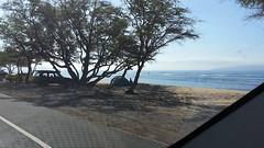 20141109_093312 (dntanderson) Tags: hawaii maui 2014 november09