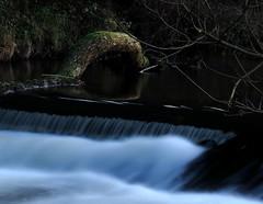 Eder Flow (whitesepulchre) Tags: water river log wasser nrw fluss nordrheinwestfalen sauerland longexposuretime eder sx50