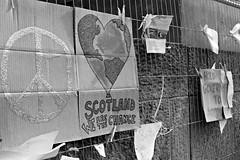 """Scotland, we are the change!"" [ YES or NOT?] (EliB.) Tags: blackandwhite bw love canon monocromo scotland edinburgh peace scottish bn change biancoenero peaceandlove 550d yesornot"