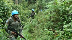 #Peacekeepers from the Indian Battalion, serving with the UN Mission in DRCongo, during an area patrol through the Pitakongo forest, DR Congo. Learn more about our mission in DRC: http://bit.ly/1eF5yIm MONUSCO Photo (United Nations Peacekeeping) Tags: from our forest during photo with dr indian an more un area mission about through congo serving learn patrol drc peacekeepers battalion drcongo monusco pitakongo httpbitly1ef5yim