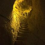 2014-11-22 Visite Ruinart et Cathédrale de Reims 118 thumbnail
