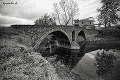 Itea (kzappaster) Tags: bridge bw reflection sony greece vivitar a7 stonebridge 19mm thessaly karditsa itea vivitar19mmf38 19mmf38 sonya7