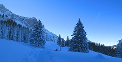 Heitertannliweg / Pilatus (miramann) Tags: schnee winter dog snow hund pilatus day1 neujahr wandern viringo frkmntegg winterwanderung 0075 krienseregg miramann