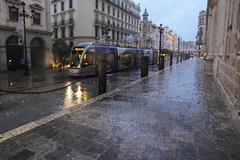 A veces hay que mojarse (cives-expat) Tags: christmas españa navidad sevilla spain seville tramway tranvía