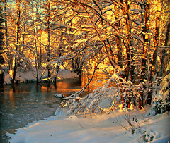once upon a time (hommik) Tags: winter snow water landscape estonia explore onceuponatime lumi talv welcometoestonia