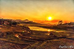 Madagascar 2014--4 (Bogdan Utza) Tags: nature landscape nikon wildlife urlaub landschaft madagascar bogdan d800 rundreise 2014 madagaskar utza