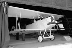 Super Scout - Fokker DVII (Sir Hectimere) Tags: worldwarone fighterplanes thegreatwar ww1aviation hermanngoering scoutplanes germanfighteraces