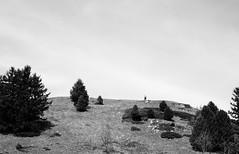 le long chemin (glookoom) Tags: light blackandwhite bw black france nature monochrome montagne landscape noir noiretblanc lumire libert contraste paysage foret blanc sapin bois chamrousse