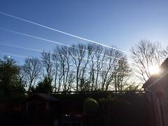 Jetting off..... (Sue_Shaw) Tags: blue trees holiday pattern flight trails silhouettes aeroplane planes blueskies sunrays aeroplanes skytrails