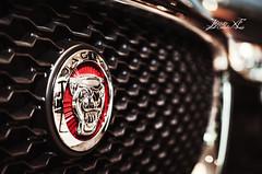 T H E Jaguar XF (Onderka) Tags: car fast jaguar fastcar xf luxuary motosport luxuarycar