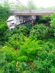 Ancienne voie de chemin de fer. Sur Lille. Quand la nature reprend ses droits. (fourmi_7) Tags: nature train graffiti centre tags arbres pont lille nord sud voie ancien abandonn vgtation chemindefer