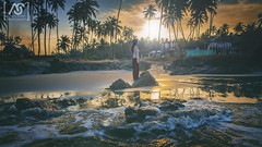 The cure for anything is salt water  sweat, tears, or the sea! (atul_astro) Tags: morning trees sea sun india nature water girl beautiful sunrise palms sand rocks waves coconut earth tide goa mother surreal shore psychedelic universe seashore cosmic gentle vagator