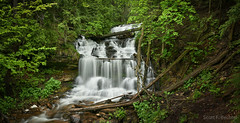 Wagner Falls - Munising, MI (2016-06-16 )-2 (bechtelsf) Tags: trees water waterfall woods nikon stream michigan upperpeninsula munising wagnerfalls d810 nikon2470mm28