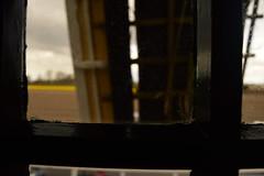 DSC_0571 (carminati_carla) Tags: holland window windmill field tulip campo holanda janela tulipa moinho keukenhof
