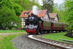 Alexisbad Harz Germany 19th May 2016 (loose_grip_99) Tags: street railroad train germany deutschland tank engine rail railway steam 99 transportation locomotive passenger harz narrowgauge metre 6001 262t harzer schmalspurbahnen alexisbad gassteam